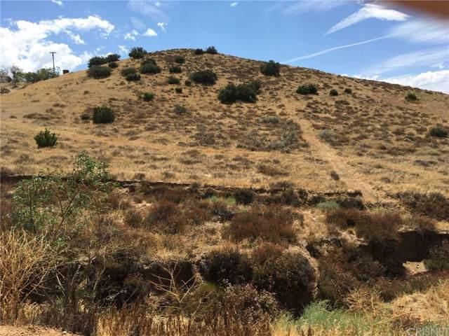 0 Vac/Sierra Hwy/Vic Thomas, Acton, CA  (#SR19223957) :: The Agency