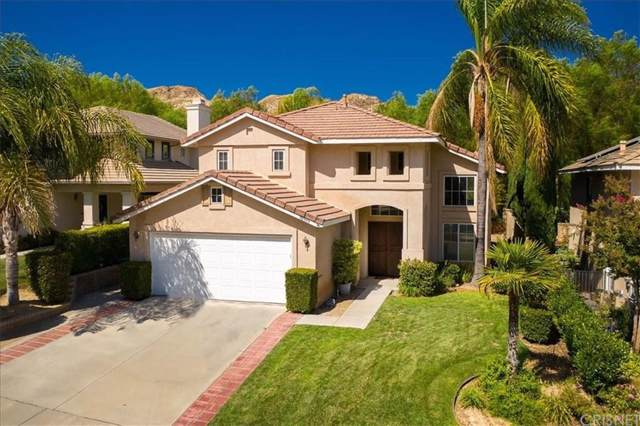 30393 Falls Drive, Castaic, CA 91384 (#SR19223969) :: Randy Plaice and Associates
