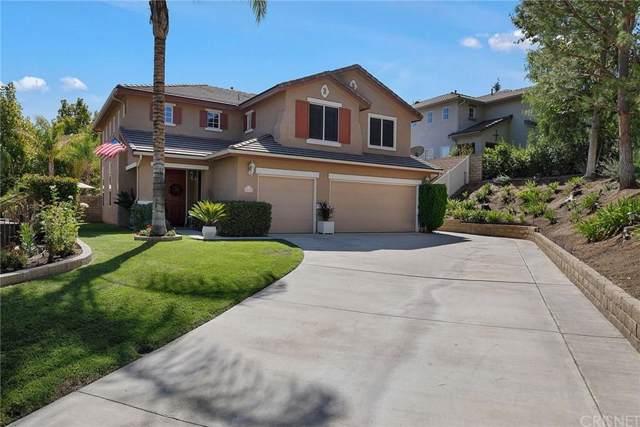 28638 Lupine Street, Castaic, CA 91384 (#SR19221257) :: Randy Plaice and Associates
