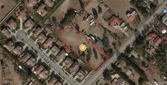 15445 Roxford Street, Sylmar, CA 91342 (#SR19224030) :: The Fineman Suarez Team