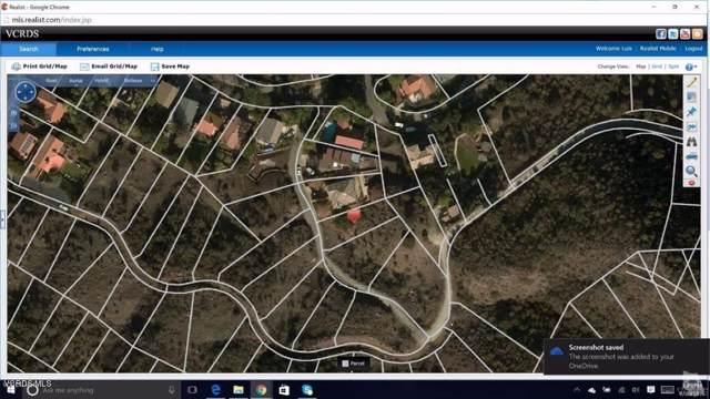 Canyon Way, Agoura Hills, CA 91301 (#219011723) :: Golden Palm Properties