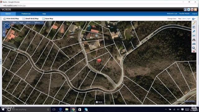 1 CANYON WAY, Agoura Hills, CA 91301 (#219011725) :: Golden Palm Properties