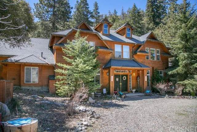 1401 Zion Way, Pine Mountain Club, CA 93222 (#SR19225637) :: The Parsons Team