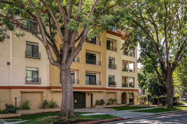 742 Locust Street #502, Pasadena, CA 91101 (#819004427) :: The Fineman Suarez Team