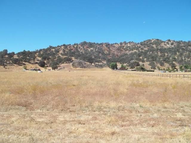 Sasia Road, Tehachapi, CA 93561 (#219012108) :: The Fineman Suarez Team