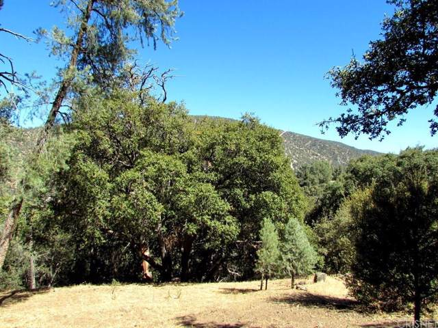 2720 Bryce Court, Pine Mountain Club, CA 93225 (#SR19231249) :: Lydia Gable Realty Group