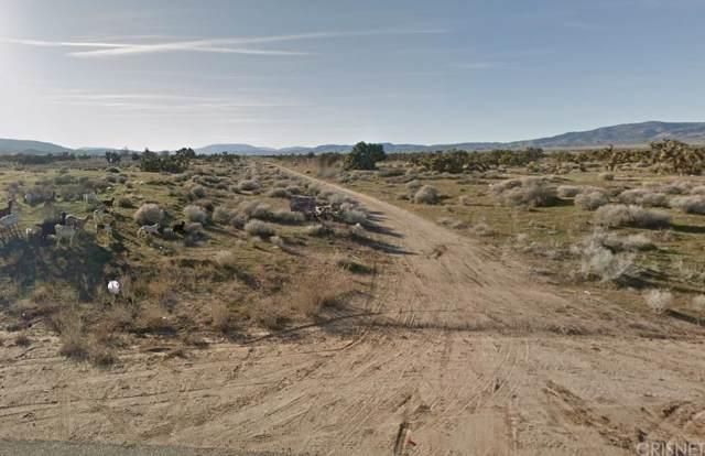 23200 Vac/Ave B2 Drt /Vic 232 Stw, Fairmont, CA 93536 (#SR19235289) :: TruLine Realty