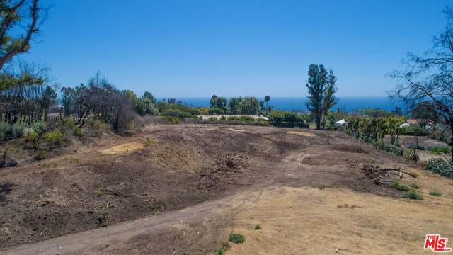 29710 Cuthbert Road, Malibu, CA 90265 (#19518898) :: Lydia Gable Realty Group