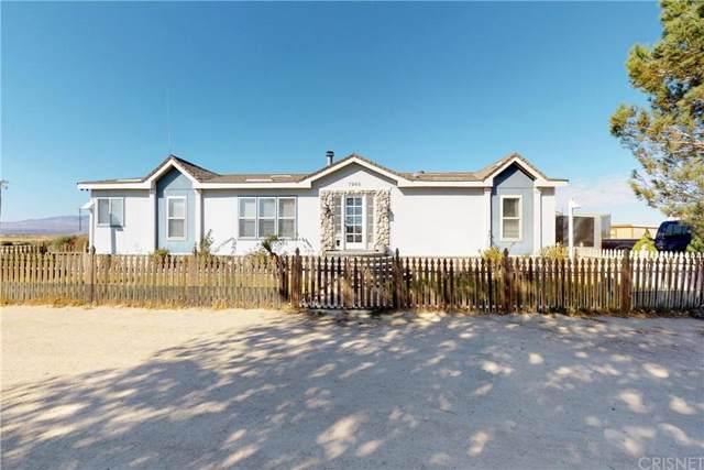 7943 Cathy Avenue, Rosamond, CA 93560 (#SR19240066) :: Lydia Gable Realty Group