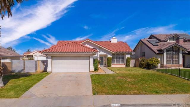 6015 Caleche Road, Quartz Hill, CA 93536 (#SR19239248) :: The Agency