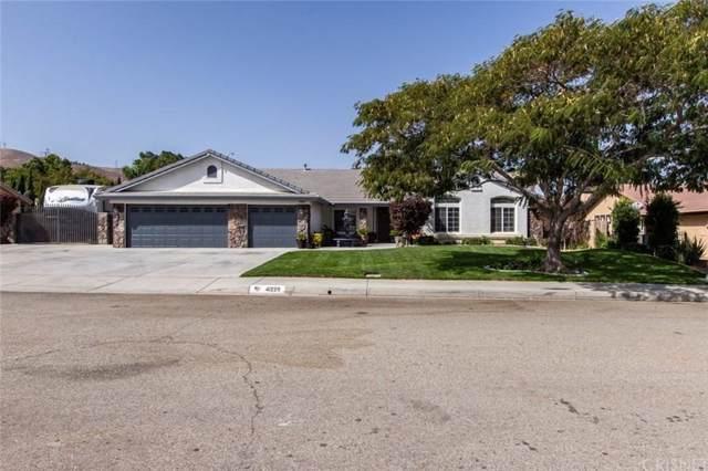 41229 Clayton Court, Palmdale, CA 93551 (#SR19241161) :: Golden Palm Properties