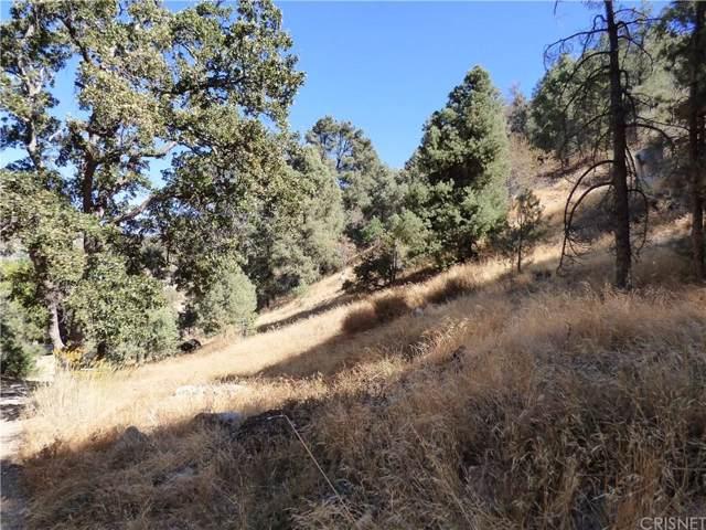 0 Valley Trails, Frazier Park, CA 93225 (#SR19241486) :: Golden Palm Properties