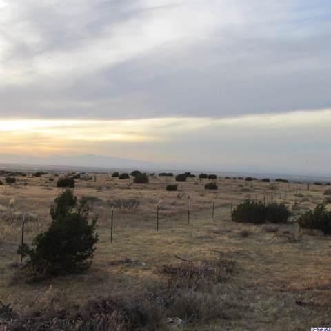 0 Vac/Vic Barrel Spring/40Th Ste, Palmdale, CA 93550 (#319004090) :: Eman Saridin with RE/MAX of Santa Clarita