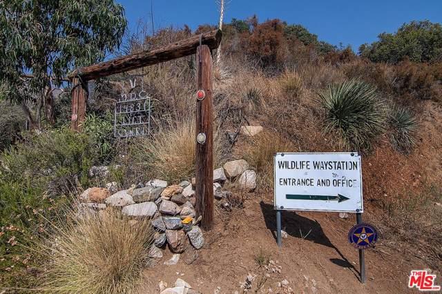 14831 Little Tujunga Canyon Road, Sylmar, CA 91342 (#19516714) :: The Fineman Suarez Team