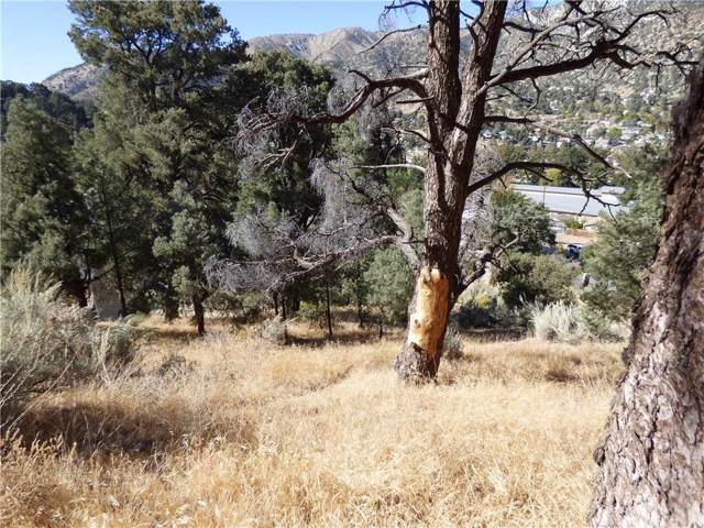 0 Main Trails, Frazier Park, CA 93225 (#SR19242931) :: TruLine Realty