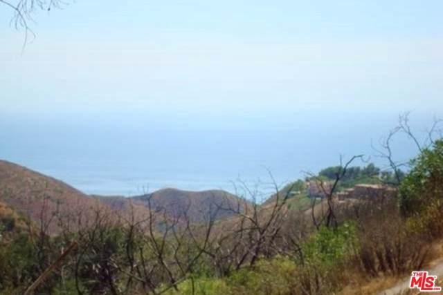 4201 Mar Vista Drive, Malibu, CA 90265 (#19530074) :: The Parsons Team
