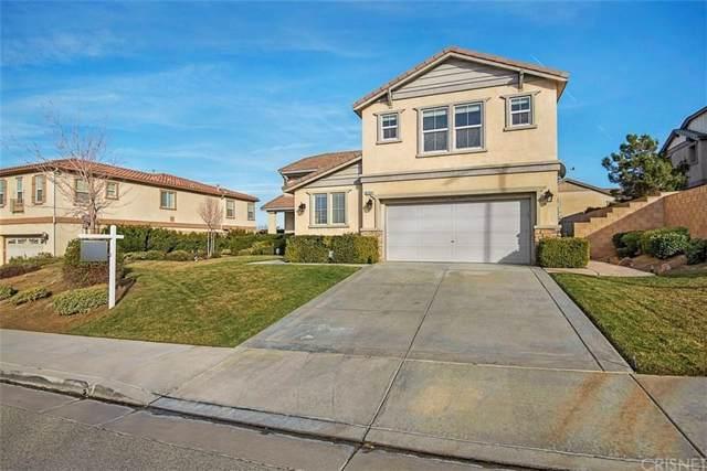 41934 Bonita Drive, Palmdale, CA 93551 (#SR20024295) :: Randy Plaice and Associates