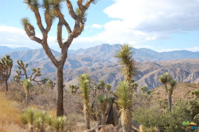 0 Ridge Road, Yucca Valley, CA 92284 (#16126258PS) :: The Fineman Suarez Team
