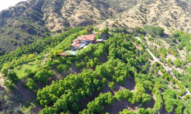 1605 Daly Road, Ojai, CA 93023 (#217007702) :: Eric Evarts Real Estate Group