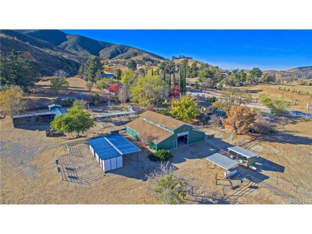 10650 Leona Avenue, Leona Valley, CA 93551 (#SR17259611) :: The Real Estate Offices of Talbot and Watson