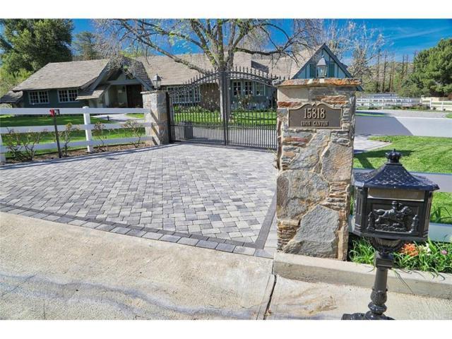 15818 Iron Canyon Road, Canyon Country, CA 91387 (#SR18082848) :: Paris and Connor MacIvor