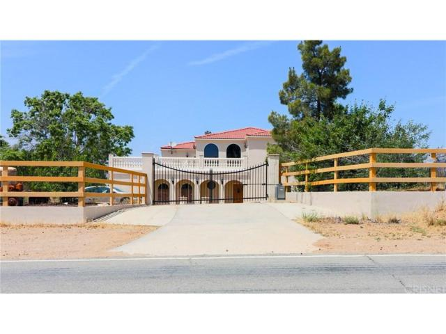 10535 Escondido Canyon Road, Agua Dulce, CA 91390 (#SR18118280) :: The Real Estate Offices of Talbot and Watson