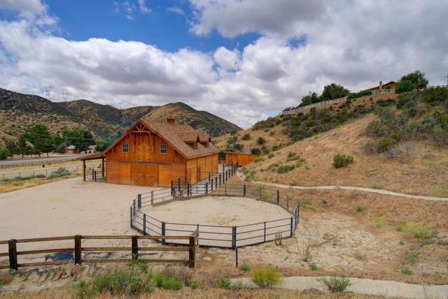 33841 Rozich Road, Agua Dulce, CA 91390 (#818002597) :: The Real Estate Offices of Talbot and Watson