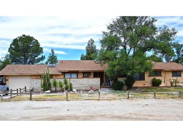 29455 Luzon Drive, Saugus, CA 91390 (#SR18141993) :: The Real Estate Offices of Talbot and Watson
