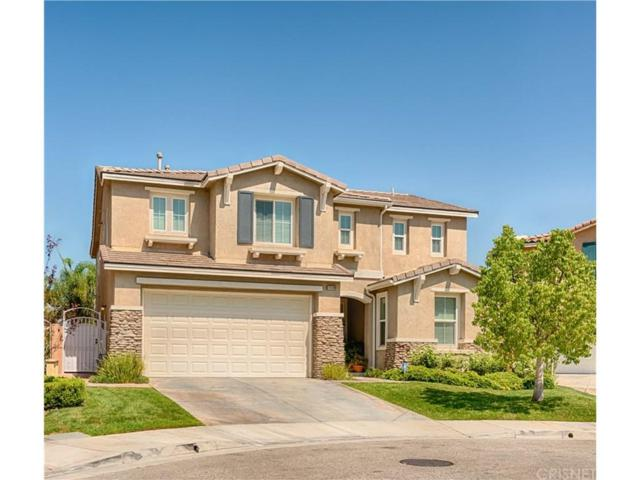17519 Sarvistree Court, Canyon Country, CA 91387 (#SR18197621) :: Carie Heber Realty Group