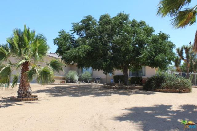 58235 Carlyle Drive, Yucca Valley, CA 92284 (#18377418PS) :: Lydia Gable Realty Group