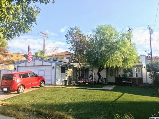 18906 Nearbrook Street, Canyon Country, CA 91351 (#318004405) :: TruLine Realty