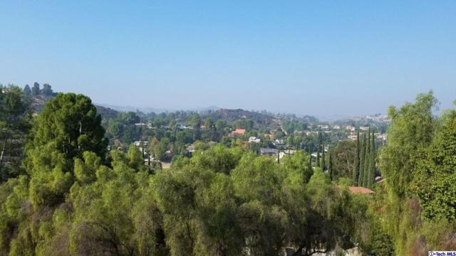 21480 Iglesia Drive, Woodland Hills, CA 91364 (#318004401) :: Lydia Gable Realty Group