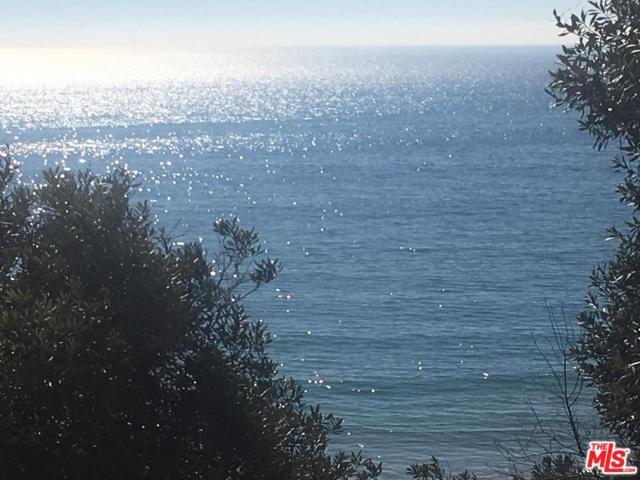 17504 Castellammare Drive, Pacific Palisades, CA 90272 (#18404428) :: The Fineman Suarez Team