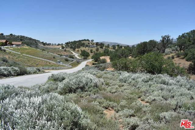 18200 Matterhorn Dr, Tehachapi, CA 93561 (#19-528790) :: The Pratt Group