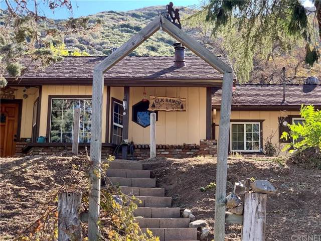 9350 Lost Valley Ranch Road, Leona Valley, CA 93551 (#SR19271149) :: Lydia Gable Realty Group