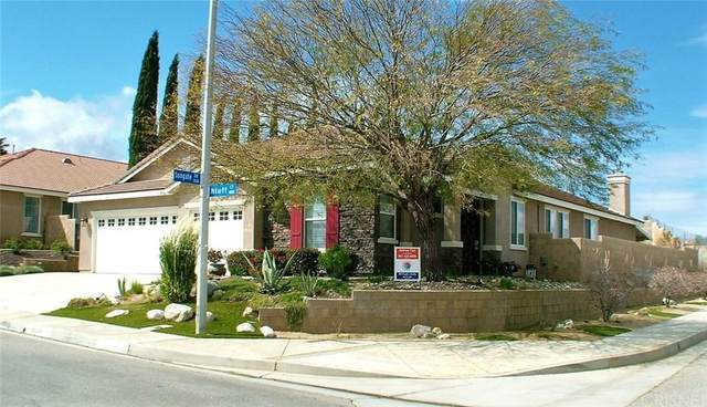 40041 Bluff Court, Palmdale, CA 93551 (#SR20007249) :: TruLine Realty