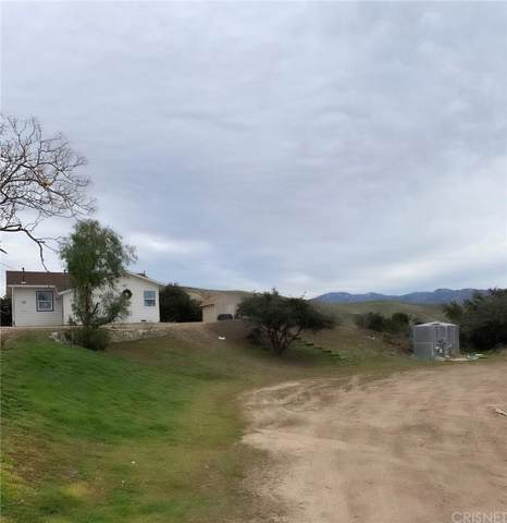 32410 Barber Road, Agua Dulce, CA 91390 (#SR20009787) :: Lydia Gable Realty Group