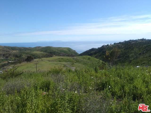 2570 Encinal Canyon Rd, Malibu, CA 90265 (MLS #20-561816) :: Hacienda Agency Inc