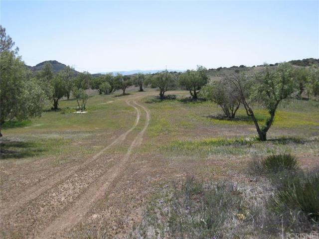 0 Vac/Gavin Ct/Vic Trail Road, Agua Dulce, CA 91390 (#SR16186911) :: Lydia Gable Realty Group