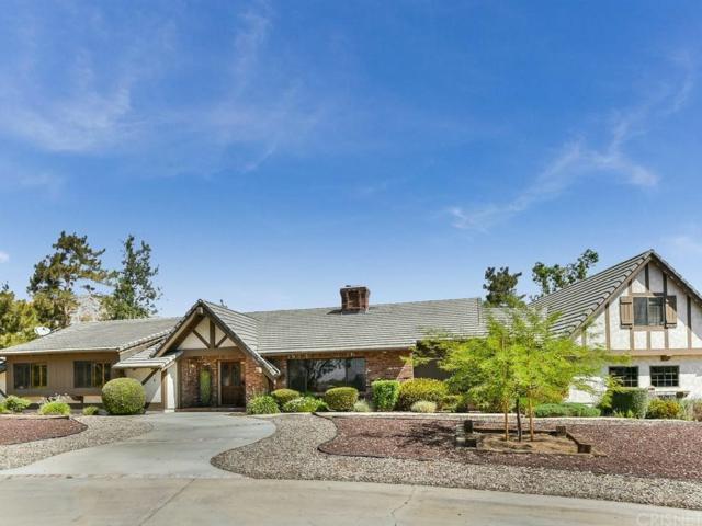 34303 Agua Dulce Canyon Road, Agua Dulce, CA 91390 (#SR19025225) :: Paris and Connor MacIvor