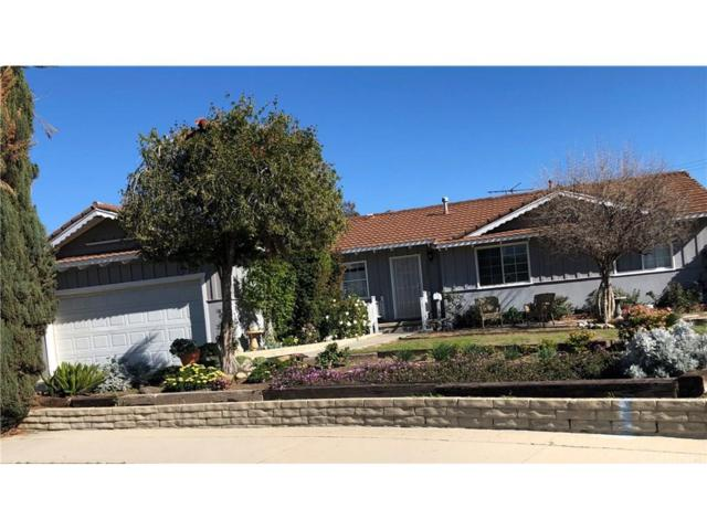 10338 Alabama Avenue, Chatsworth, CA 91311 (#SR19032486) :: Paris and Connor MacIvor
