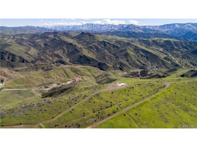 0 Vac/Pvt Trl/3/4 Mi S Davenport, Agua Dulce, CA 91350 (#SR19034769) :: The Real Estate Offices of Talbot and Watson
