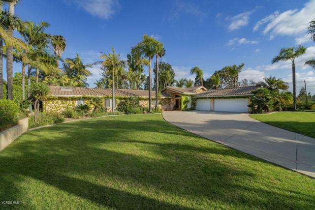 1702 Ramona Drive, Camarillo, CA 93010 (#219004011) :: Lydia Gable Realty Group