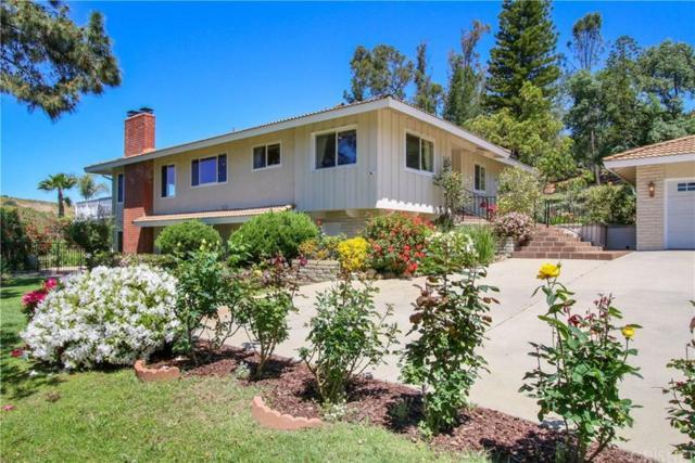 2087 Calle Salto, Thousand Oaks, CA 91360 (#SR19090185) :: Golden Palm Properties