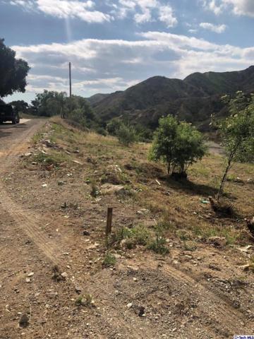 0 La Tuna Canyon, Sun Valley, CA 91352 (#319002080) :: Randy Plaice and Associates