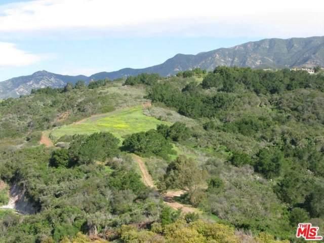 3589 Toro Canyon Park Rd, Santa Barbara, CA 93018 (MLS #19-474096) :: Zwemmer Realty Group