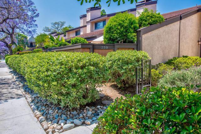 239 E Del Mar Boulevard, Pasadena, CA 91101 (#819002596) :: TruLine Realty