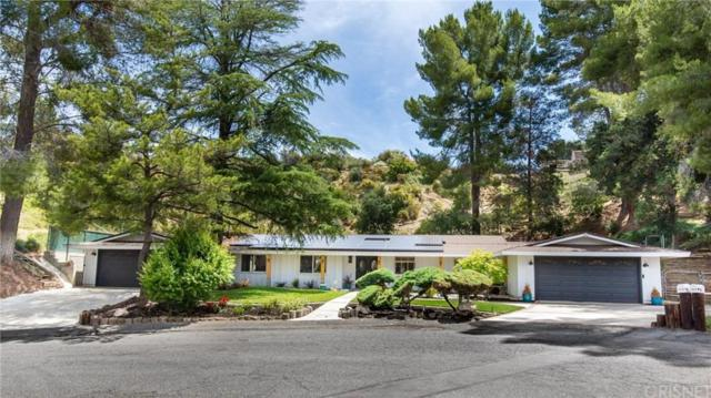 15715 Beaver Run Road, Canyon Country, CA 91387 (#SR19141602) :: Lydia Gable Realty Group