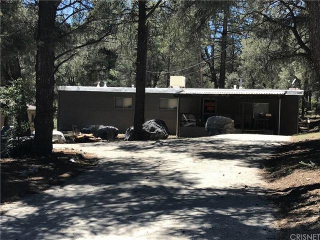 2817 Polar, Pine Mountain Club, CA 93222 (#SR19143735) :: Golden Palm Properties