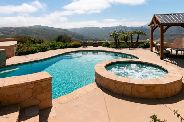 33310 Hassted Drive, Malibu, CA 90265 (#219007755) :: Lydia Gable Realty Group